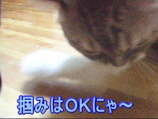 20061016134009.jpg