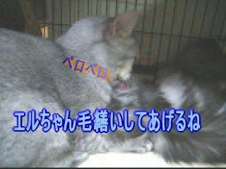 20061104021333.jpg
