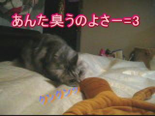20061110170023.jpg