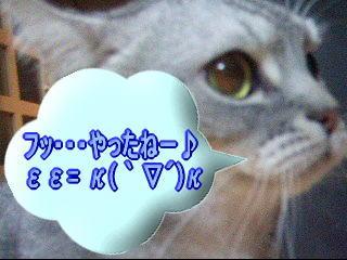 20061217032151.jpg