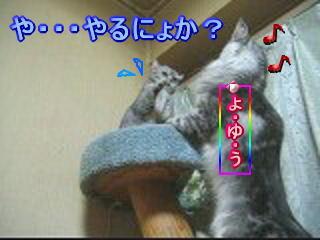 20070205170236.jpg