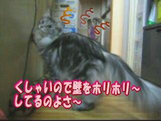20070421035830.jpg