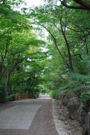 植物園 道
