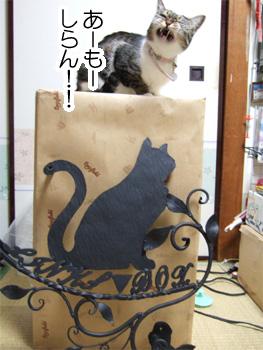 黒猫館看板