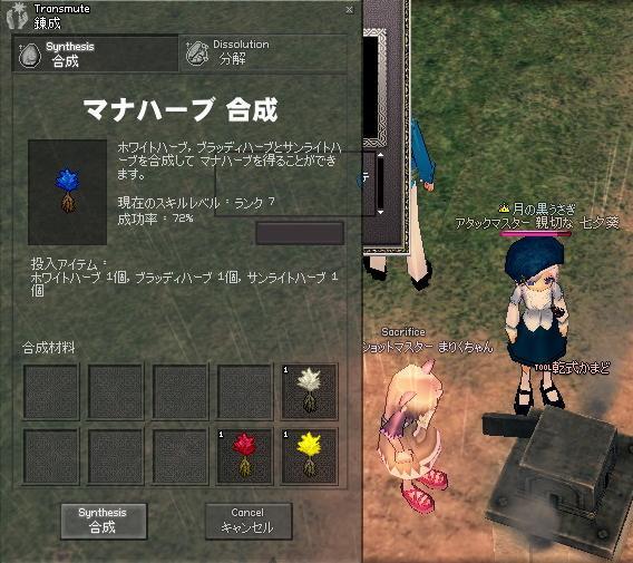 mabinogi_2009_07_18_004.jpg