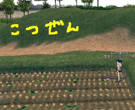 mabinogi_2009_08_11_001.jpg
