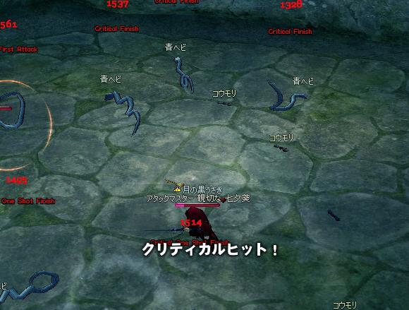 mabinogi_2009_08_27_005.jpg