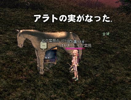 mabinogi_2009_08_29_003.jpg