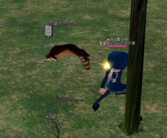 mabinogi_2009_09_11_003.jpg