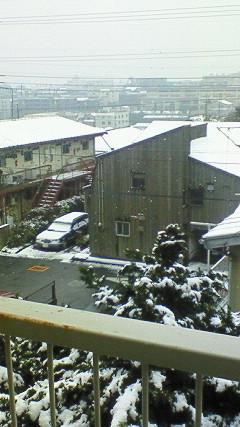 2008 初雪