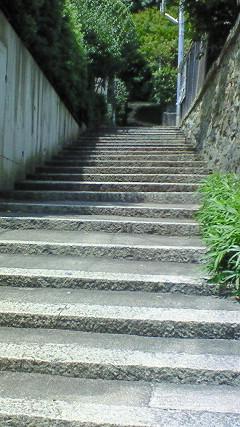 茂庵への階段