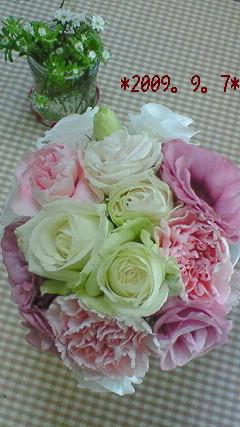 2009。9.7 花