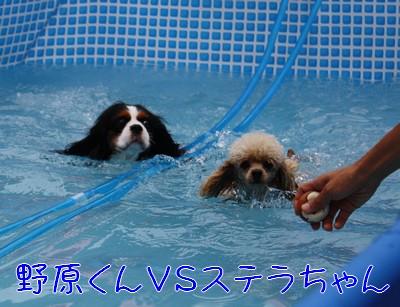09721nohara2.jpg