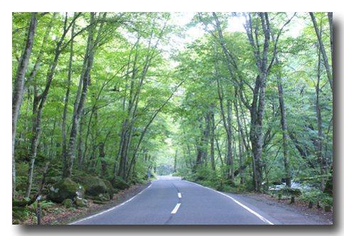 道路から.jpg