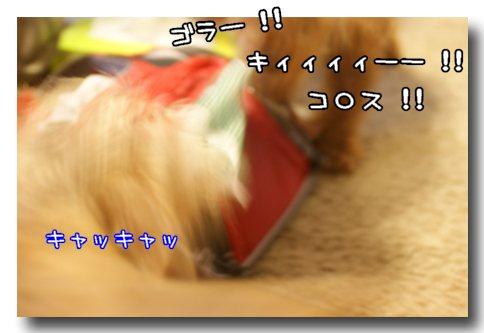乱闘.jpg