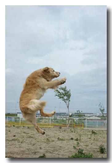 ジャンプ②