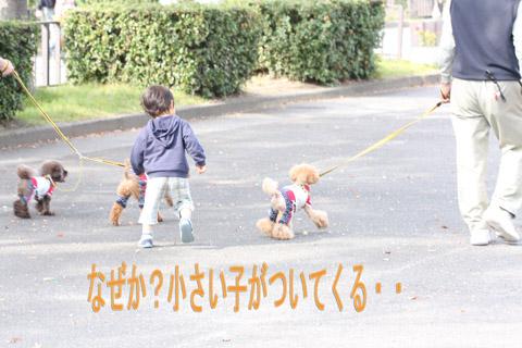 大阪城110211