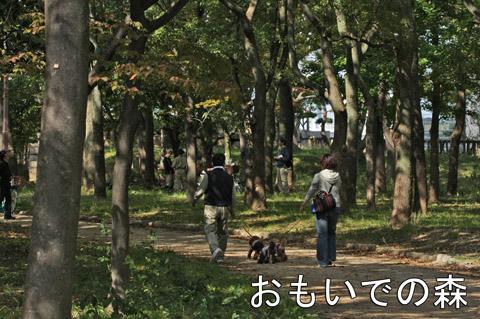 大阪城110214