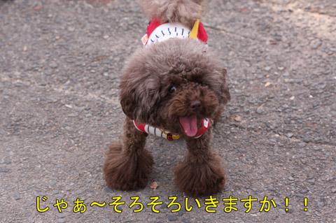 大阪城11028