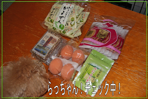静岡からの愛1
