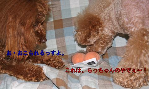 静岡からの愛7