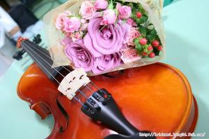 薔薇とバイオリン