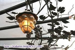 葡萄ライト