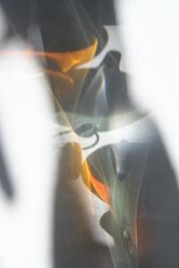 ガリレオ温度計 2