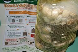 キノコ栽培への道 六日目 3