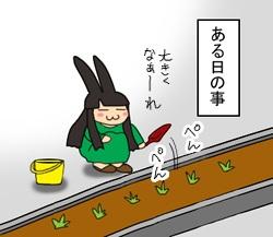 花壇にて 1
