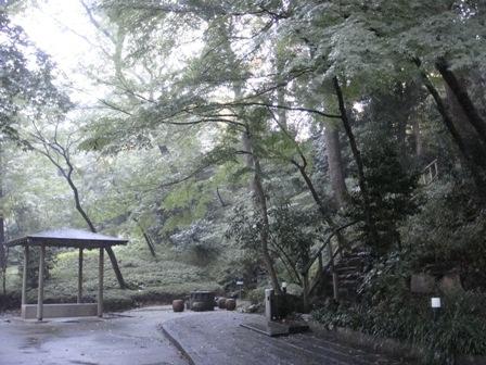 ホテルの庭2