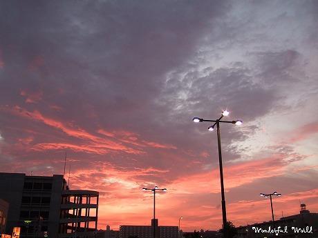 2007_0806yoko0003.jpg