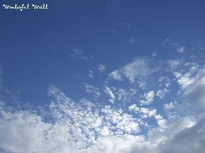 2007_09040137.jpg