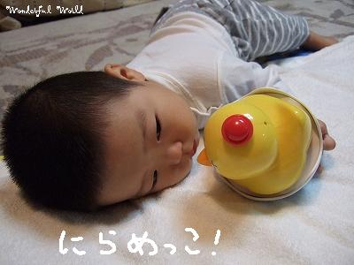 a2007_0806yoko0190.jpg