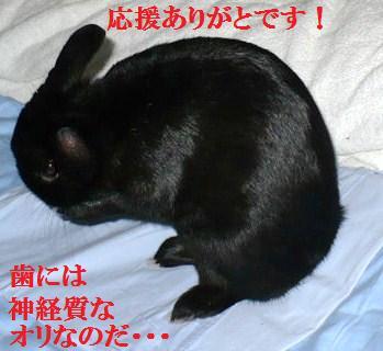 003-moji.jpg
