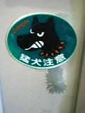 haru-capshibazaki 027