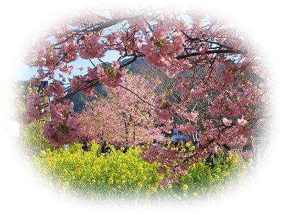 2008-03-06-3.jpg