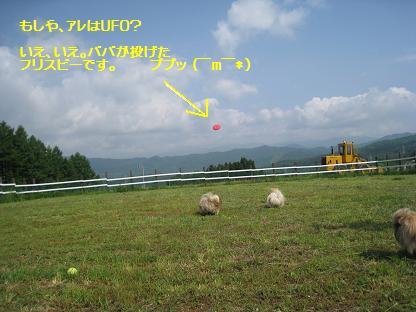 2008-06-08-3.jpg