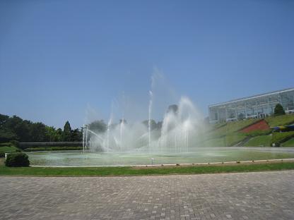 2008-06-13-5.jpg