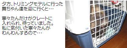 2008-06-18-neneJPG.jpg