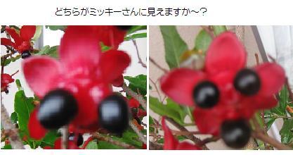 2008-07-10-4.jpg