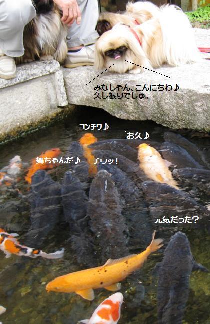 2008-08-08-2.jpg