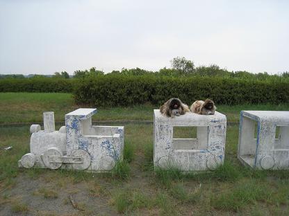 2008-08-23-13.jpg