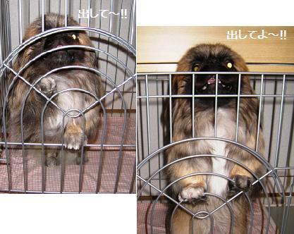 2008-09-15-7.jpg