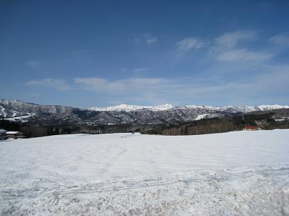 2008-1-15-4.jpg