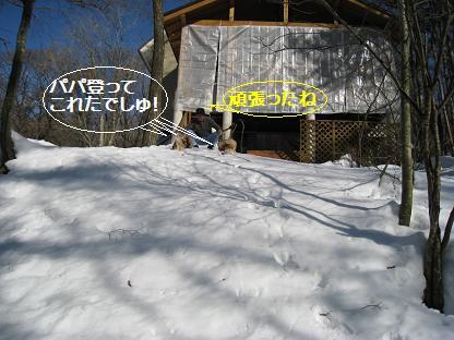 2008-1-15-5.jpg