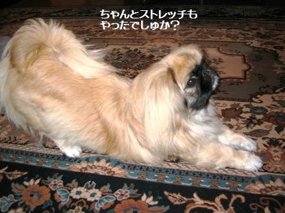 2008-10-12-1.jpg
