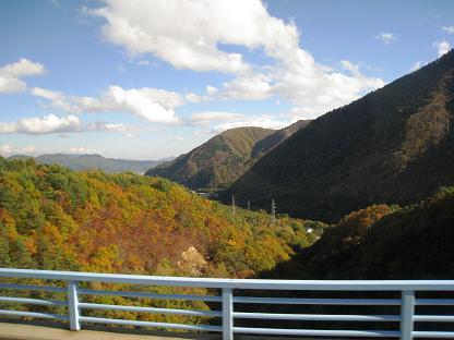 2008-10-28-1.jpg