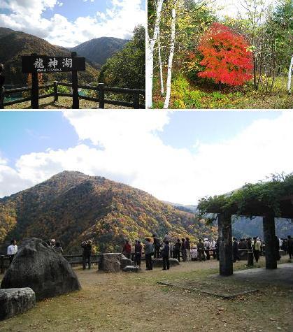 2008-10-28-2a.jpg