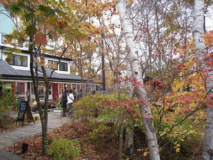 2008-10-31-6ya-2.jpg